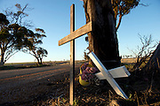 Crosses and flowers mark an road accident site. Road safety is a primary concern in the WA's wheat belt. Wyalkatchem North Road, Wyalkatchem, Western Australian Wheatbelt. 08 December 2012 - Photograph by David Dare Parker