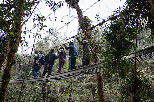 A group of school children from the Queros-Wachiperi Native Community visit the Wayqecha Cloud & Children on canopy walkway Wayqecha Cloud Forest Biological ...