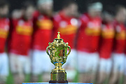 The Webb Ellis trophy is on display during the national anthems during the Rugby World Cup qualifier between Hong Kong and Canada at Stade Delort, Marseilles, France on 23 November 2018. Picture by Ian  Muir.
