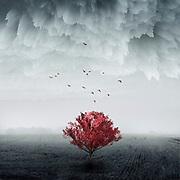 REDBUBBLE Prints: http://rdbl.co/2o4J5yr<br /> Society6 Prints: http://bit.ly/2GaaiHg