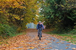 United States, Washington, Snohomish, woman bicycling on path in fall.  MR