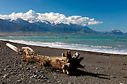 Kaikoura, driftwood and Seaward Range, New Zealand