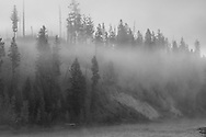 It was a beautiful foggy morning along the North Fork of the Flathead River. After swirling around for a couple hours the fog cleared out again like it was never there.