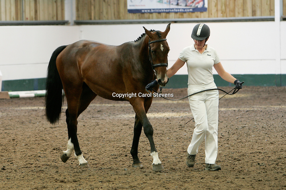 BEF Futurity July 2012  Richmond EC<br />