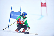 Schladming, Austria - 2017 March 19: Barbara Mardones from Chile (109) competes in Alpine Skiing Competition while Special Olympics World Winter Games Austria 2017 on the &quot;Sepp-Walcher-Downhill&quot;<br /> (Slope 32) near the &quot;Tauernalm&quot; in Rohrmoos on March 19, 2017 in Schladming, Austria.<br /> <br /> Mandatory credit:<br /> Photo by &copy; Adam Nurkiewicz / Mediasport<br /> <br /> Adam Nurkiewicz declares that he has no rights to the image of people at the photographs of his authorship.<br /> <br /> Picture also available in RAW (NEF) or TIFF format on special request.<br /> <br /> Any editorial, commercial or promotional use requires written permission from the author of image.<br /> <br /> Image can be used in the press when the method of use and the signature does not hurt people on the picture.