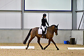 22 - 28th Nov - Evening Dressage