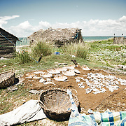 Fisherman house on Kalpitiya archipelago with dry fish. Kalpitiya is located in Puttalam district, North Western province of Sri Lanka. It is known for its serene beauty. It consists of 14 islands. It has a total area of 16.73 km2. The people of Kalpitiya are mostly fishermen. It's a world famous kite surfing spot during the windy season start from may. During the rest of the year it's a wonderful clearwater lagoon. Most of the people are Christians and Muslims.