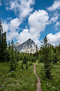 The limestone fangs of Mount Maude. Day hike from Forks Campground to North Kananaskis Pass (13 miles round trip/2700 ft) in Peter Lougheed Provincial Park, Kananaskis Country, Alberta, Canada.