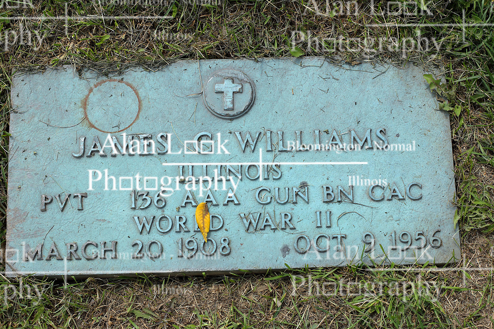 31 August 2017:   Veterans graves in Park Hill Cemetery in eastern McLean County.<br /> <br /> James C Williams  Illinois  Private 136 AAA Gun BN GAC  World War II  March 20 1908  Oct 9 1956