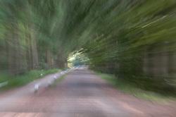 Corversbos moving green