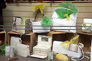 Shop window handbag display Woodbridge, Suffolk