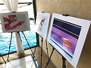 """Lgota, Poland - 2019 March 02:  Photo Exhibition """"PyeongChang 2018"""" while Jurassic Photo Festival at Fajkier Hotel on March 02, 2019 in Lgota, Poland.<br /> <br /> Mandatory credit:<br /> Photo by © Adam Nurkiewicz<br /> <br /> {name} declares that he has no rights to the image of people at the photographs of his authorship.<br /> <br /> Picture also available in RAW (NEF) or TIFF format on special request.<br /> <br /> Any editorial, commercial or promotional use requires written permission from the author of image.<br /> <br /> Image can be used in the press when the method of use and the signature does not hurt people on the picture."""