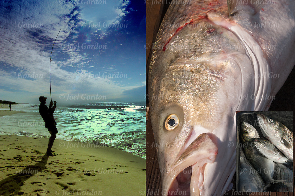 Three photographs used of fishing combined with two images of Striped bass on dock. <br />