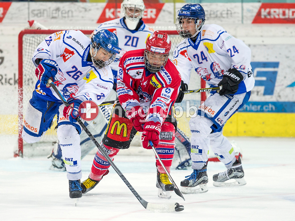 (L-R) ZSC Lions defenseman Jan Fehr and Rapperswil-Jona Lakers defenseman Janis Egger fight for the puck during the fifth Elite B Playoff Final ice hockey game between Rapperswil-Jona Lakers and ZSC Lions held at the SGKB Arena in Rapperswil, Switzerland, Sunday, Mar. 19, 2017. (Photo by Patrick B. Kraemer / MAGICPBK)