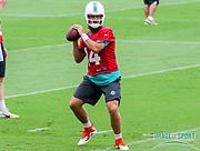 Miami Dolphins quarterback Ryan Fitzpatrick(14) prepares to pass the ball during Minicamp at the Baptist Health Training Facility at Nova Southeastern University, Wednesday, June 5, 2019 in Davie, Fla. (Kim Hukari/Image of Sport)