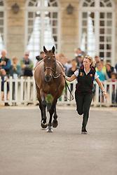 Karin Donckers, (BEL), Fletcha van t Verahof - First Horse Inspection  - Alltech FEI World Equestrian Games™ 2014 - Normandy, France.<br /> © Hippo Foto Team - Dirk Caremans<br /> 25/06/14