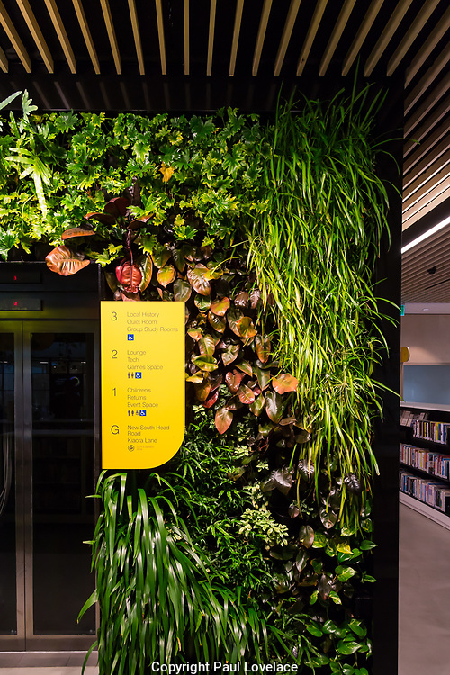 Woollahra library is totally unique in that it is surrounded by greenery inside. The entrance has a vertical garden wall where books can be returned.The library's main staircase is surrounded by hanging greenery from the ceiling and it is also used as a seating area for film screenings.