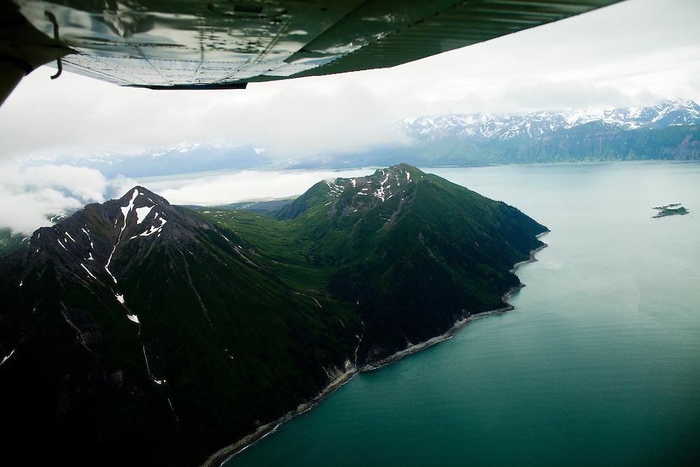 Alaska_2010.-Brown Bear and two cubs on Katmai. Photo by Tom Lynn