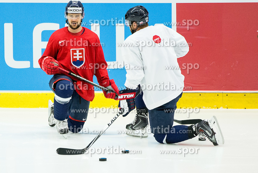 Tomas Tatar and Marian Gaborik during practice session of Slovakia Ice Hockey National Team at Day 4 of 2015 IIHF World Championship, on May 4, 2015 in Practice arena Vitkovice, Ostrava, Czech Republic. Photo by Vid Ponikvar / Sportida