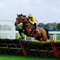 Kempton 16th October