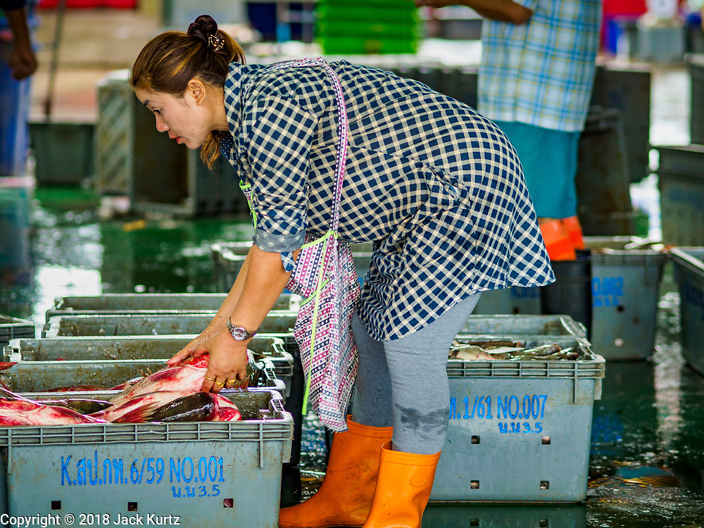 19 JULY 2018 - BANGKOK, THAILAND: Workers sort fish at the Saphan Pla Fish Market in Bangkok. Fish consumption recently hit a record high according to a report published recently by the United Nations Food and Agriculture Organization. The FAO reported that global fish production peaked at about 171 million tonnes in 2016, 47 percent of it from fish farming. The FAO also reported that global fish consumption between 1961 and 2016 was rose nearly twice as fast as population growth. In 2015, fish accounted for about 17 percent of the animal protein consumed globally. This has ramifications for Thailand, which has one of the world's largest fish and seafood industries. About 90% of Thailand's seafood production is exported, which accounts for about 4% of Thailand's exports.       PHOTO BY JACK KURTZ