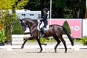 Theodora Livanos - Winston<br /> European Championships Dressage 2017<br /> © DigiShots