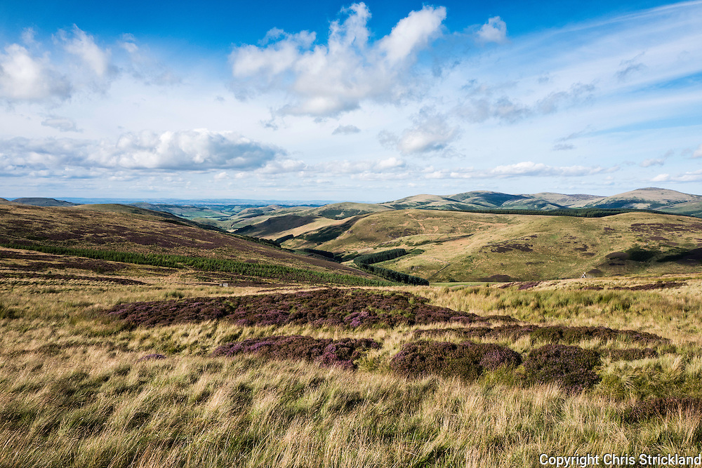 29th August 2016. Looking north east into the Bowmont Valley from Dere Street.