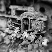 Nature And Machine - Pottsville - Merlin, Oregon - Lensbaby - Black & White