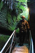 Glowworm cave, Lake Te Anau, South Island, New Zealand<br />