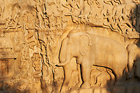 Inde, etat du Tamil Nadu, Mamallapuram ou Mahabalipuram, Ascese de Arjuna ou La Descente du Gange, bas relief, patrimoine mondial de l Unesco // India, Tamil Nadu, Mamallapuram or Mahabalipuram, Arjunas Penance granite carvings, Unesco world heritage