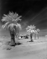 A deserted house surrounded by palm trees near Ajo, Arizona.