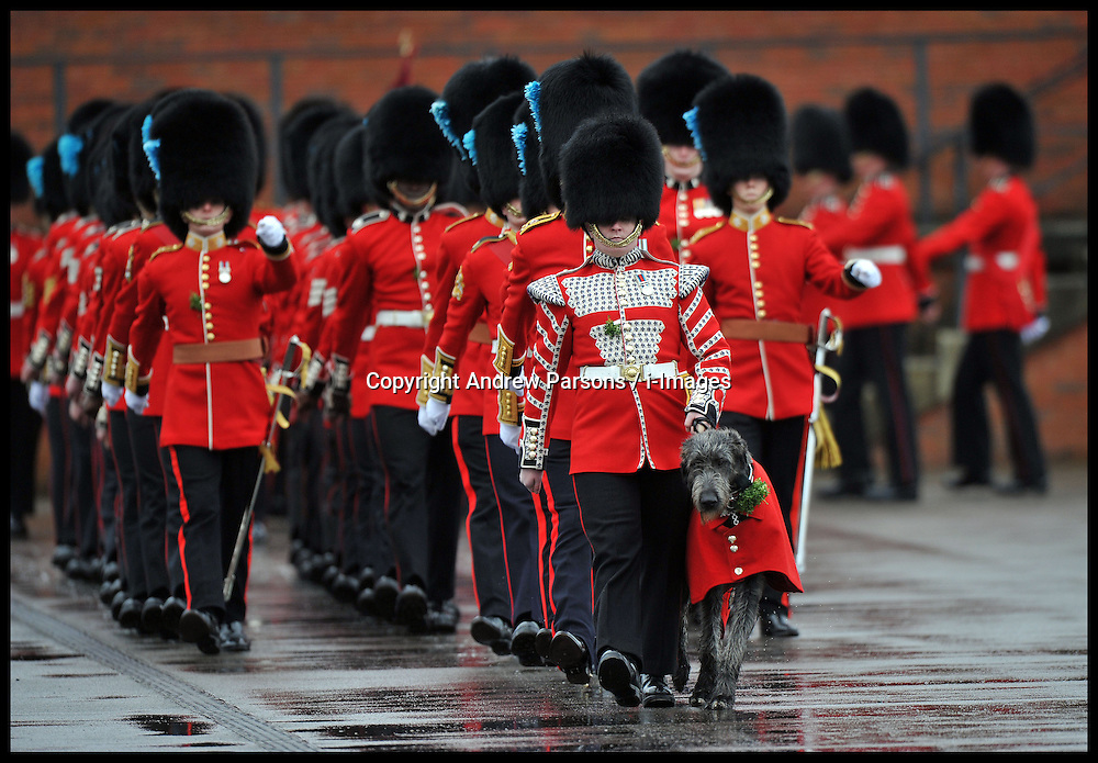 Irish Guards' on parade at the St Patrick's Day Parade in Aldershot, Sunday March 17, 2013. Photo By Andrew Parsons / i-Images