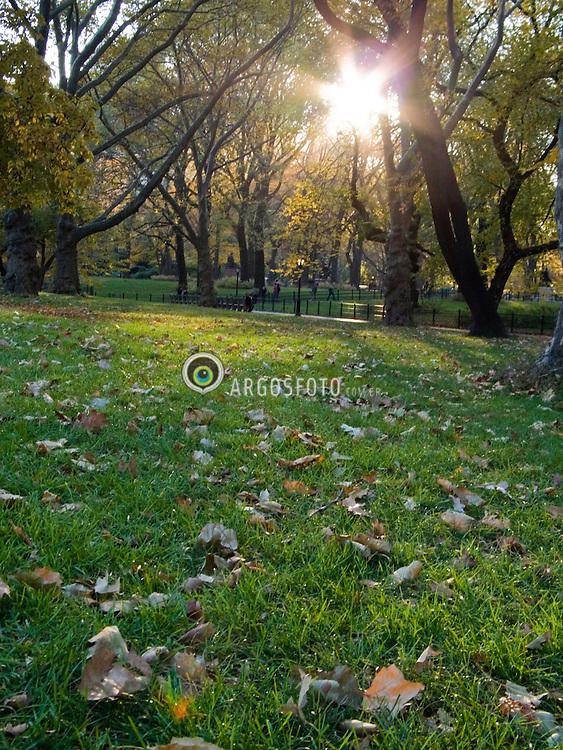 O Central Park eh um grande parque dentro da cidade americana de Nova Iorque, Estado de Nova Iorque, United States/  Central Park is a large public, urban park  in the borough of Manhattan in New York City.