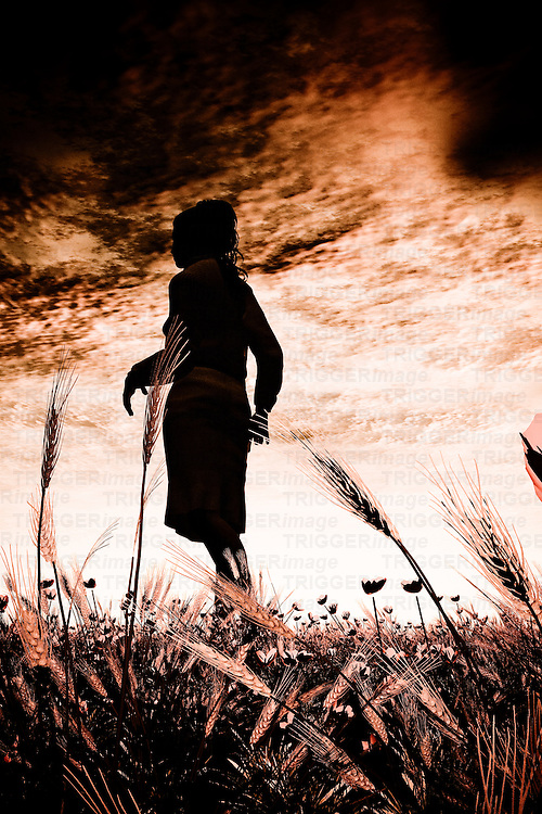 A young woman silhouetted in a corn field against a dark sky