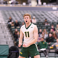 4th year setter Michael Corrigan (11) of the Regina Cougars in action during Men's Volleyball home game on January 13 at Centre for Kinesiology, Health and Sport. Credit: /Arthur Images 2018