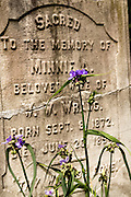 A tombstone surrounded by blooming flowers in the Saint Philips Episcopal Church Cemetery along Church Street in historic Charleston, SC.
