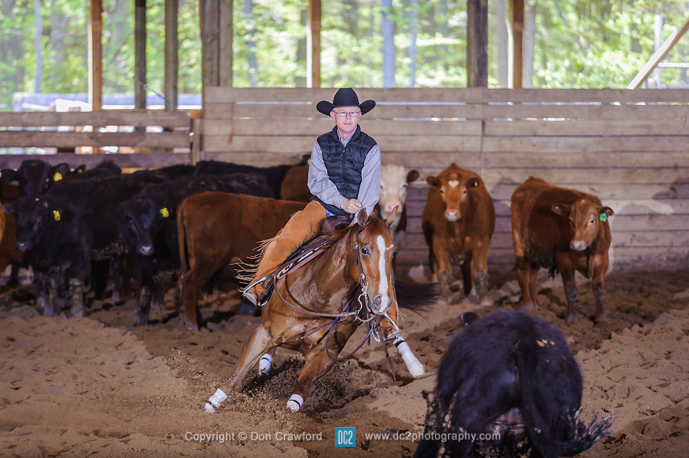May 20, 2017 - Minshall Farm Cutting 3, held at Minshall Farms, Hillsburgh Ontario. The event was put on by the Ontario Cutting Horse Association. Riding in the Open Class is Brian Kelly on The Reyl Slim Shady owned by Eric Bouchard.
