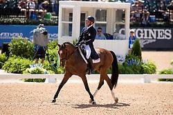 Van Springel Joris, BEL, Imperial van de Holtakkers<br /> World Equestrian Games - Tryon 2018<br /> © Hippo Foto - Sharon Vandeput<br /> 13/09/2018