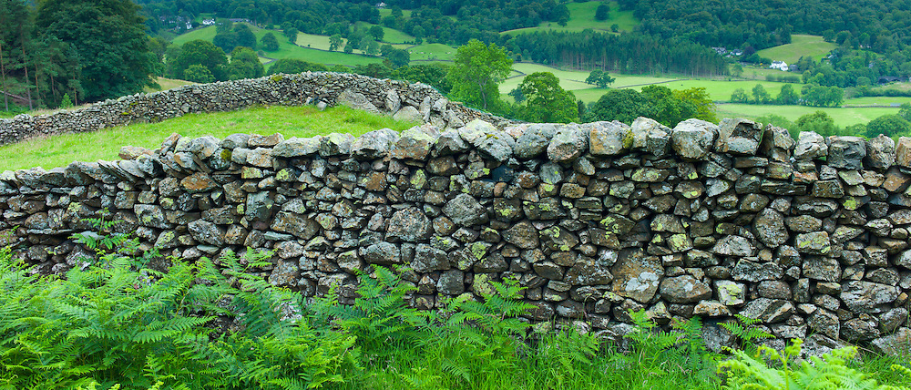 Drystone wall near Loughrigg in the Lake District National Park, Cumbria, UK