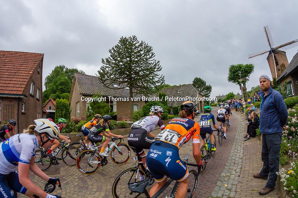 Dutch National Cycling Championships