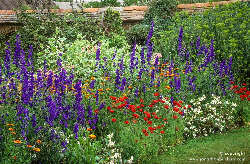 Consolida 'Venus Blue' (Larkspur), Calendula officinalis 'Prince Orange', Papaver commutatum 'Ladybird' syn. P. commutatum, Begonia F1 'Stara White' in the Solar Garden at Great Dixter