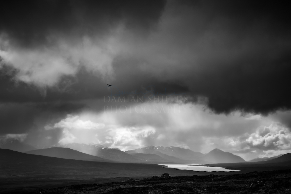 'As the crow flies' <br />