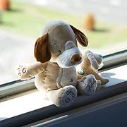 Nederland Rotterdam  31-08-2009 20090831 Foto: David Rozing                  Serie over zorgsector, Ikazia Ziekenhuis Rotterdam.   Knuffeldieren in het raamkozijn op een ziekenhuiszaal.  stuffed animal toy in hospital dorm. Holland, The Netherlands, dutch, Pays Bas, Europe ,  stilleven, still, ,aanmoedigen, hulp, helpen, moral support ..Foto: David Rozing
