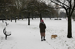 © Licensed to London News Pictures. 19/01/2013, London, UK.  A woman walks her dog in a park in Croydon, South London, Saturday, Jan. 19, 2013. More cold weather and snow are expected over the coming days. Photo credit : Sang Tan/LNP