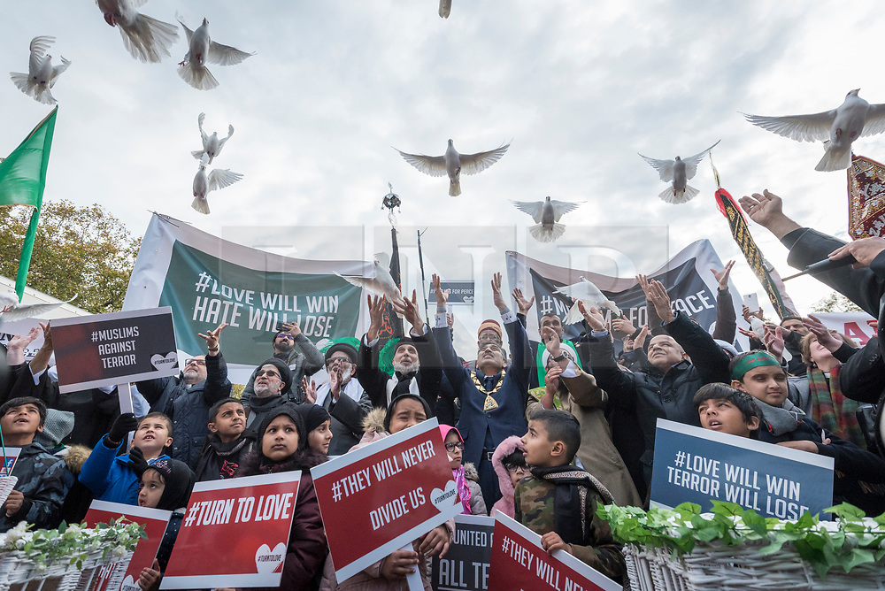 © Licensed to London News Pictures. 04/11/2018. LONDON, UK. A multi-faith release of white doves for world peace takes place, as hundreds of members of the Muslim community gather by Marble Arch to take part in the Arbaeen Procession.   Photo credit: Stephen Chung/LNP