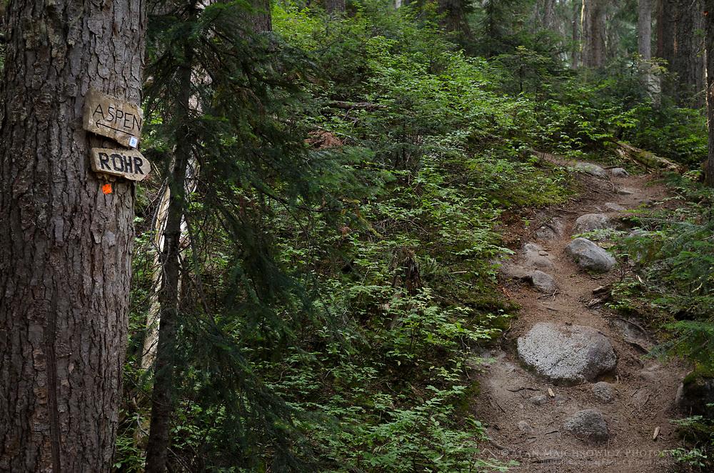 Trail marker, Marriott Basin trail Coast Mountains British Columbia