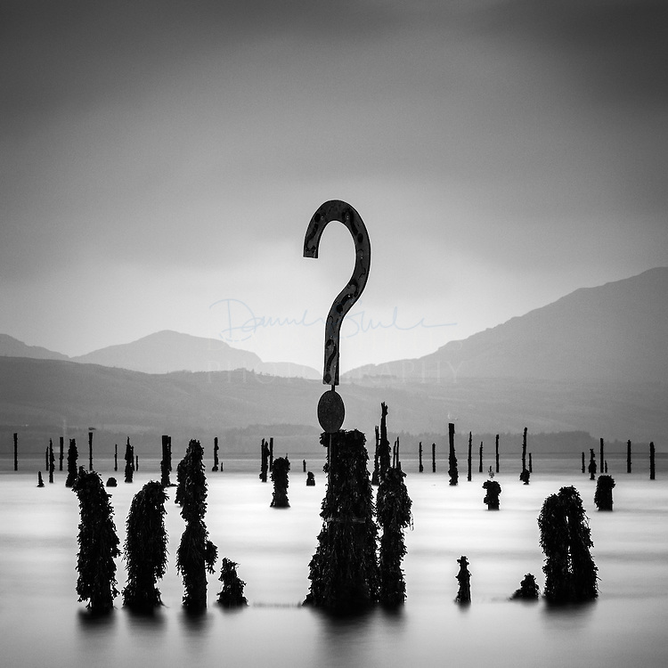 The Question | Damian Shields Photography