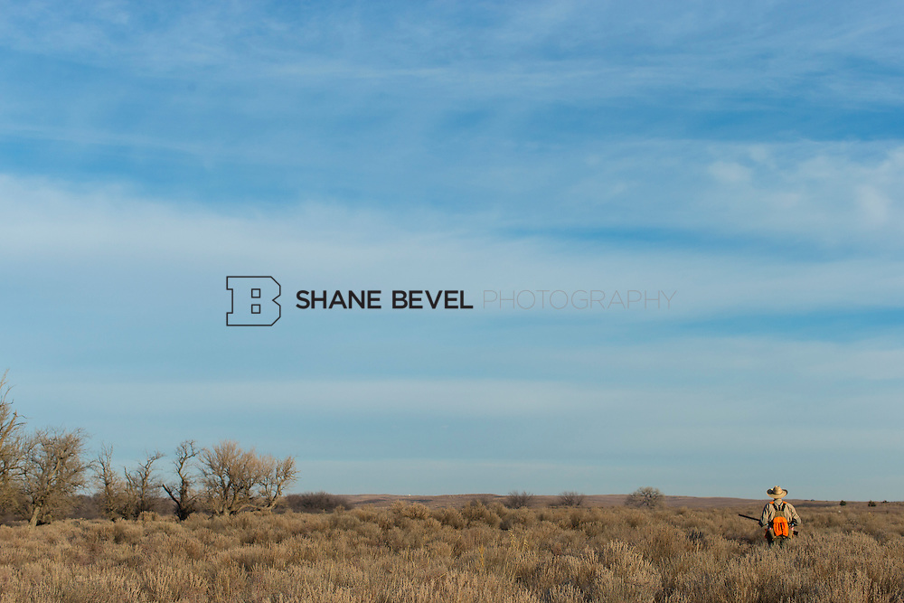 12/8/12 10:12:50 AM -- Quail hunting on the Cimarron Hills WMA in western Oklahoma. <br /> <br /> Photo by Shane Bevel