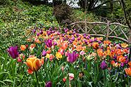 Central Park-Shakespeare Garden