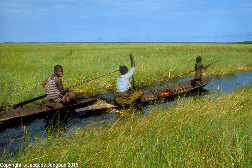 Africa, Democratic Republic of the Congo, Ngiri River area, Libinza tribe. Women in canoe in swamp savanna, going to swamp forest to fish and collect drinking water.